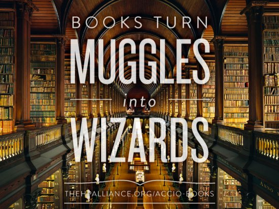 Books-Muggles-Wizzards.jpg