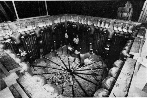 CalhounJ - Rat Experiment