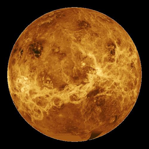 Venus copy.png